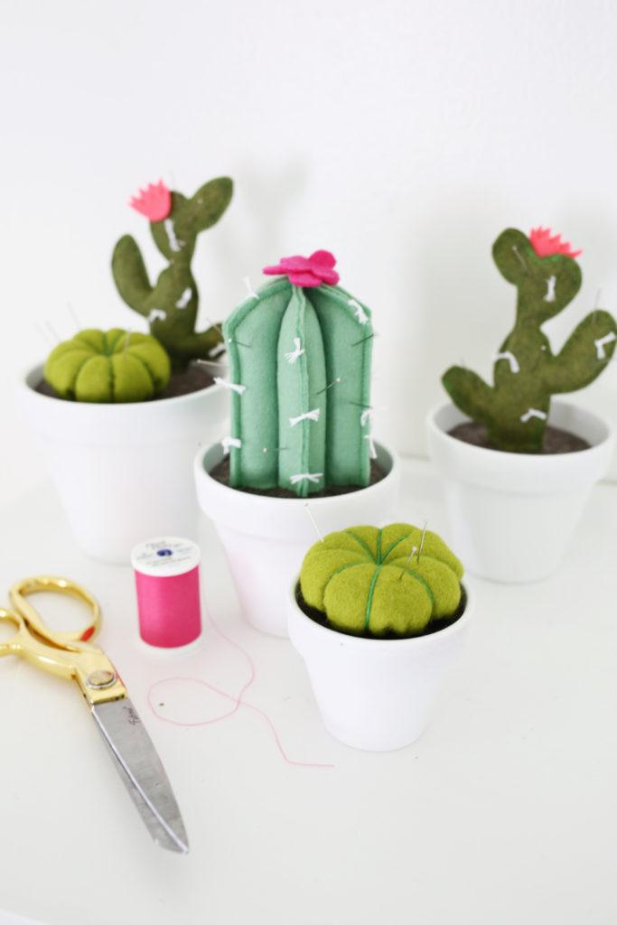 cactusdiy